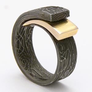 anello di protezione +1
