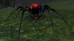 Vicious_Night_Web_Spider